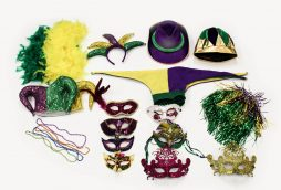 Photo Props - Mardi Gras